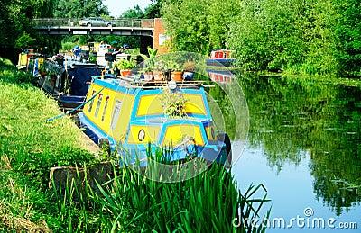 Moored narrowboats