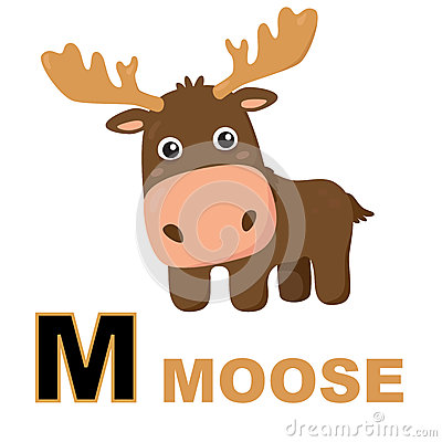Free Moose Stock Photo - 56546780