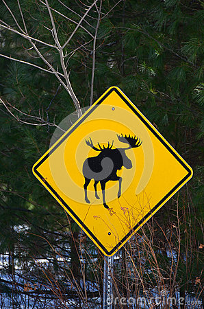 Free Moose Crossing Sign Royalty Free Stock Photos - 39727238