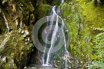 Moosiger kleiner Wasserfall 2