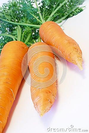 Morötter