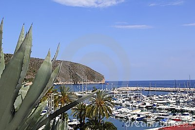 Moraira marina port view from agave
