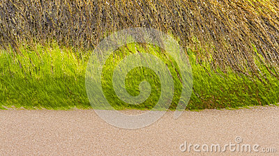 Moray beach triple.
