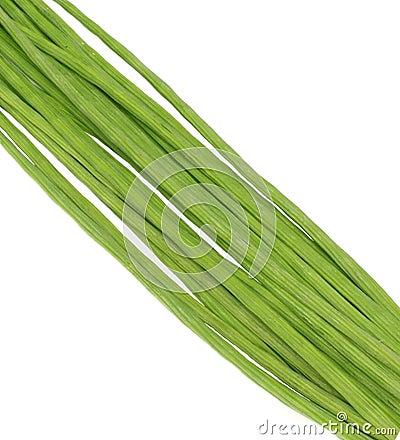 Moringa Oleifera or sonjna