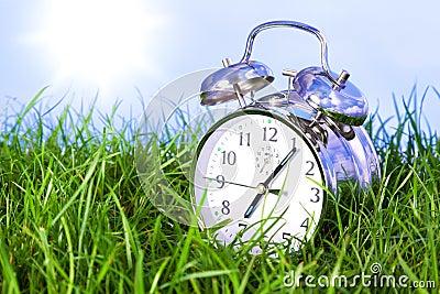 Morning alarm clock on grass