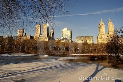 Morning in the Central Park