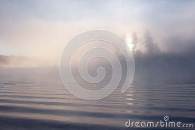 Morning fog lake sun