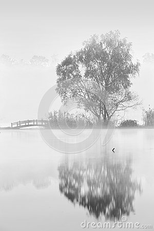 Free Morning Fog On The Lake Stock Photography - 103507672