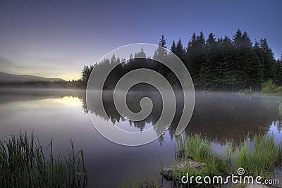 Morning Fog at Trillium Lake