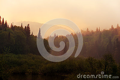Morning haze over the river