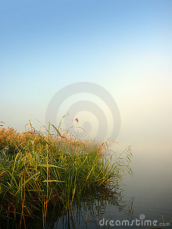 Morning lake and fog