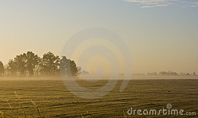 morning landscape of missouri farm field