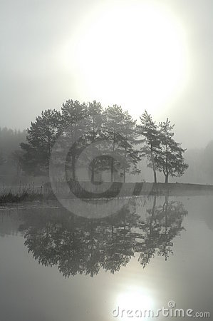Free Morning Mist Royalty Free Stock Photography - 4500207