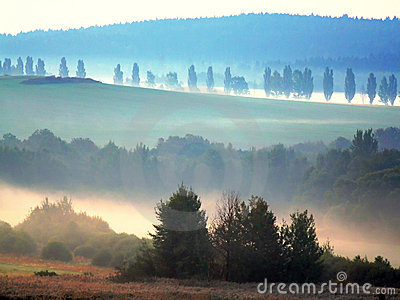 Morning mist- Bohemian forest
