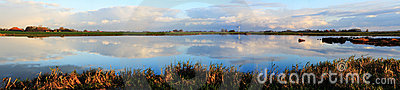 Morning panorama at the lake