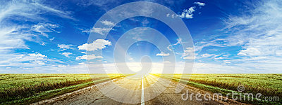 Morning summer road panorama