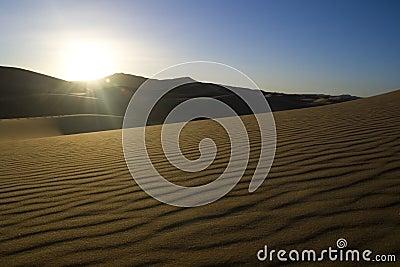 Morning sunlight in the desert