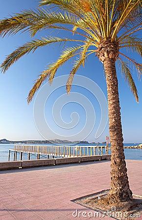 Morning Sunrise in Majorca