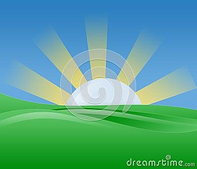 Morning Sunshine Illustration