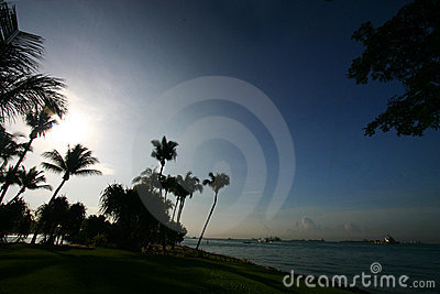 Morning, tropical seaside