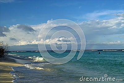 Morning on wild coast, rainbow.