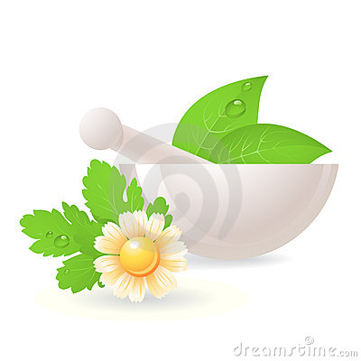 Mortar with herbs and camomile.