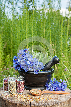 Free Mortar With Blue Cornflowers And Sage, Herbal Medicine Royalty Free Stock Photo - 42267905