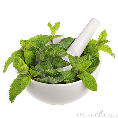 Free Mortar With Mint Royalty Free Stock Photo - 14517675