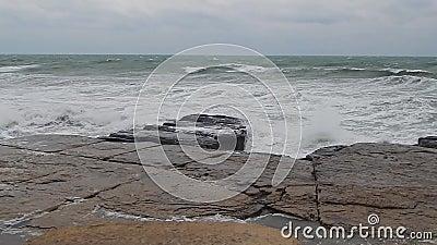 Morze Kaspijskie zbiory