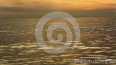 Morze Złote zdjęcie wideo