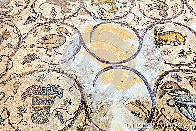 Mosaico do assoalho