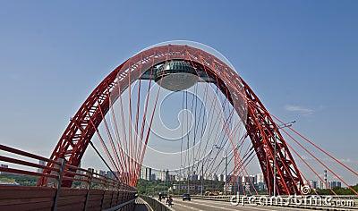 Moscow, Pictorial bridge
