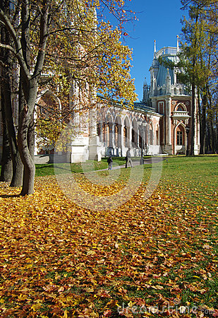 Free MOSCOW, RUSSIA - October 21, 2015: Grand Palace In Tsaritsyno In Royalty Free Stock Image - 61295926