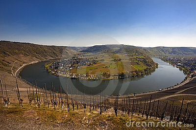 The Mosel valley near Kröv