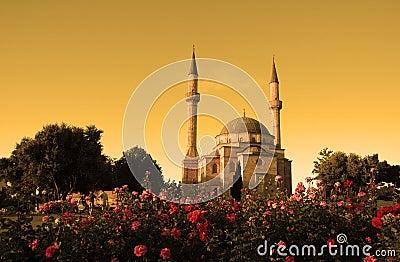 Moskee met twee minaretten