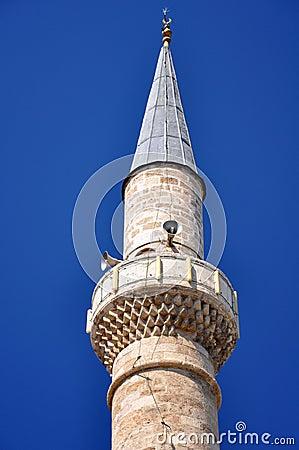 The mosque minarete
