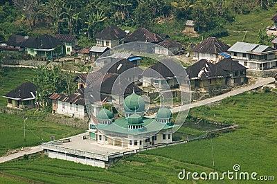 Mosque in village.