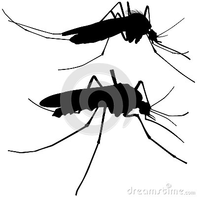 Mosquito Silhouettes