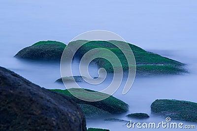 Mossy rocks at sea