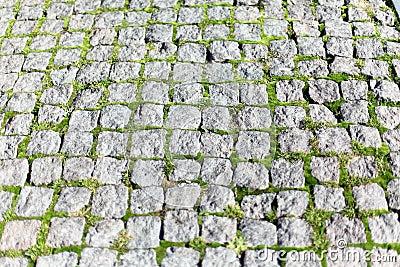 Square stone pavers