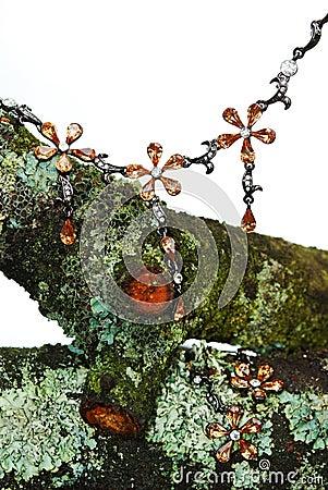 Mossy torra smycken för frunch