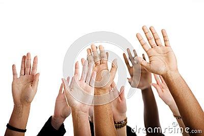 Mostra das mãos