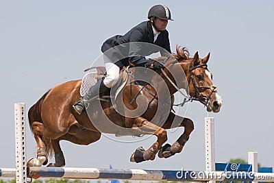Mostra de salto do cavalo