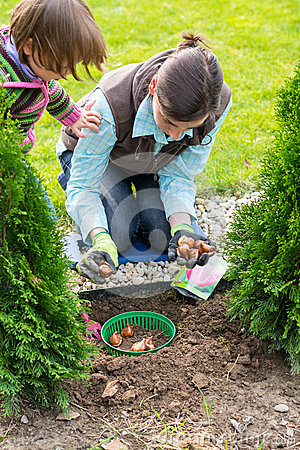 Free Mother And Daughter Planting Tulip Bulbs Stock Photography - 47272662
