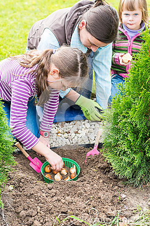 Free Mother And Daughters Planting Tulip Bulbs Stock Images - 47273364