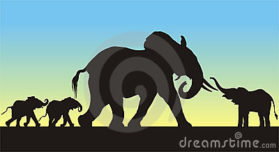 mother and babies elephants silhouettes stock images