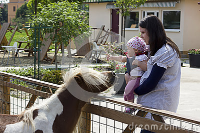 Mother and baby at animals farm