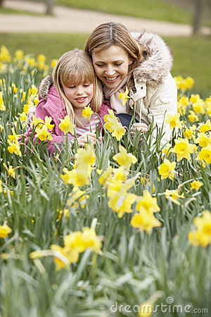 Mother And Daughter In Daffodils