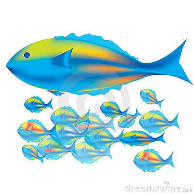 Mother Fish & baby fishes