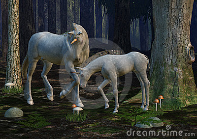 Mother & Foal Unicorn